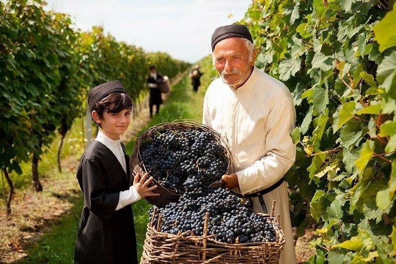 Грузинские виноделы