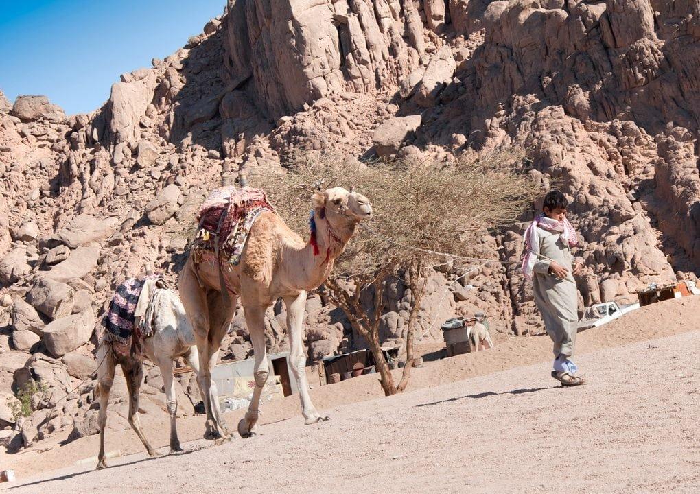 Экскурсионный отдых в Египте