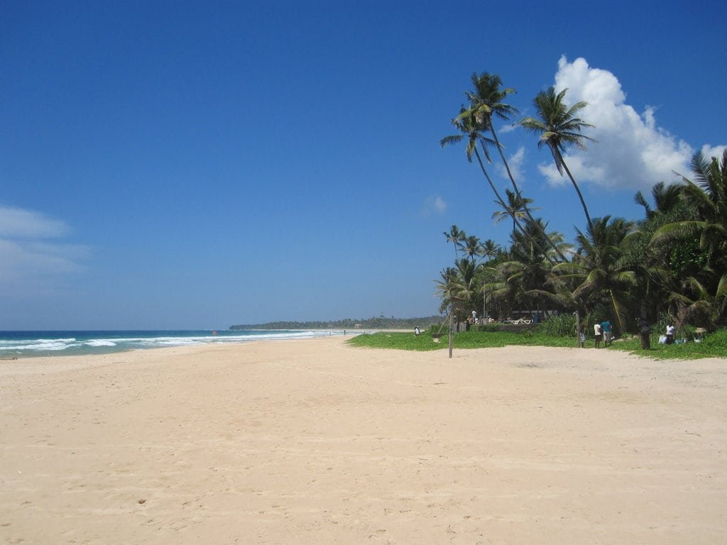 🔥Горящий тур на Шри-Ланку! 5 ночей с 28 мая за 32 778 р.