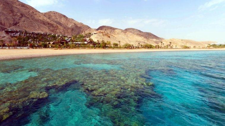 туры в египет летом 2018