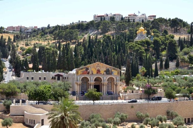 Недорогой тур в Израиль. 5 ночей с 20 июля за 27 451 р.