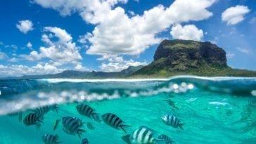 На Маврикий со скидкой! Тур на неделю за 89 503 р.