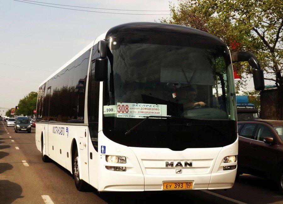 автобус 308