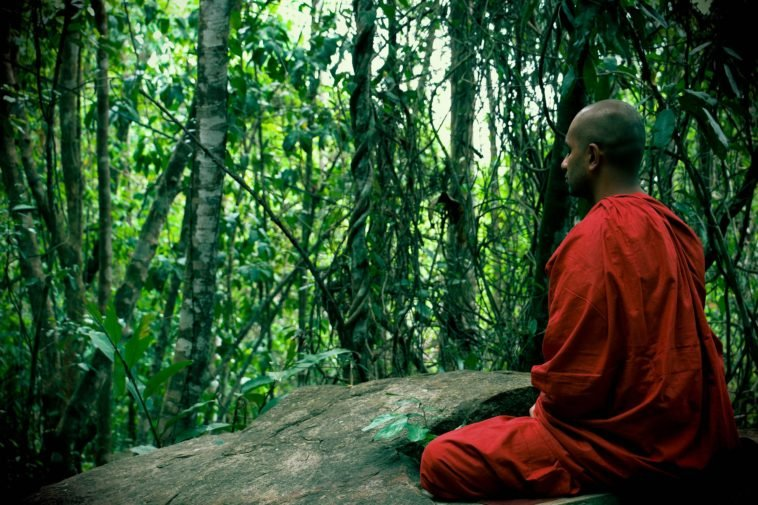 Отдых на Шри-Ланке, советы и отзывы туристов